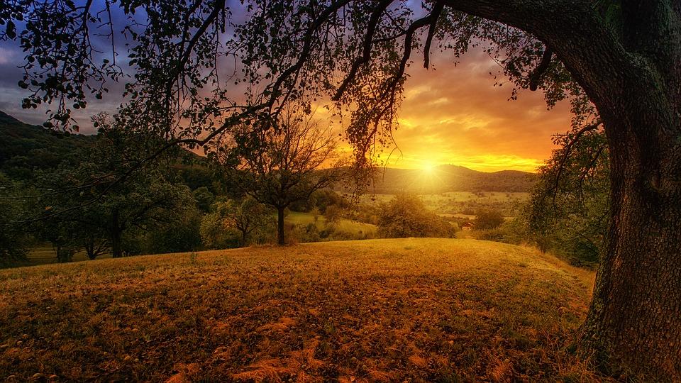 ziua fotografierii naturii